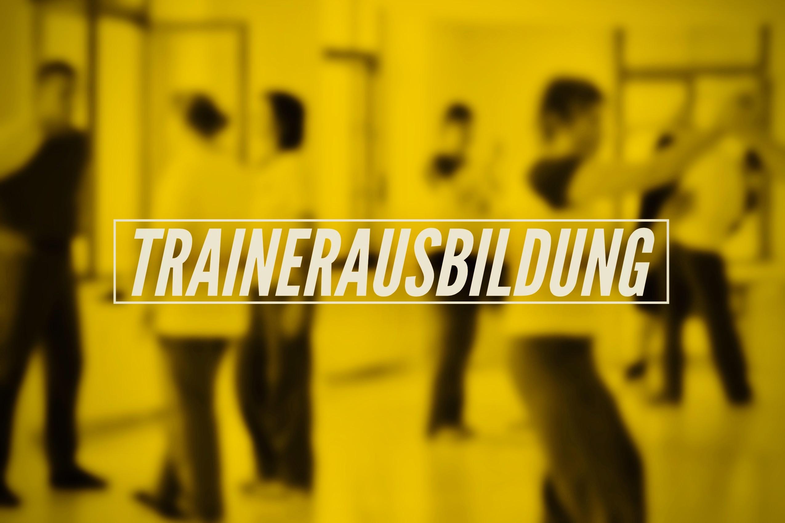 Ausbildung Selbstverteidigung Kampfkunst Lüneburg