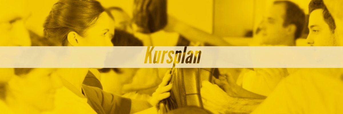 Kursplan Selbstverteidigung Kampfkunst Lüneburg